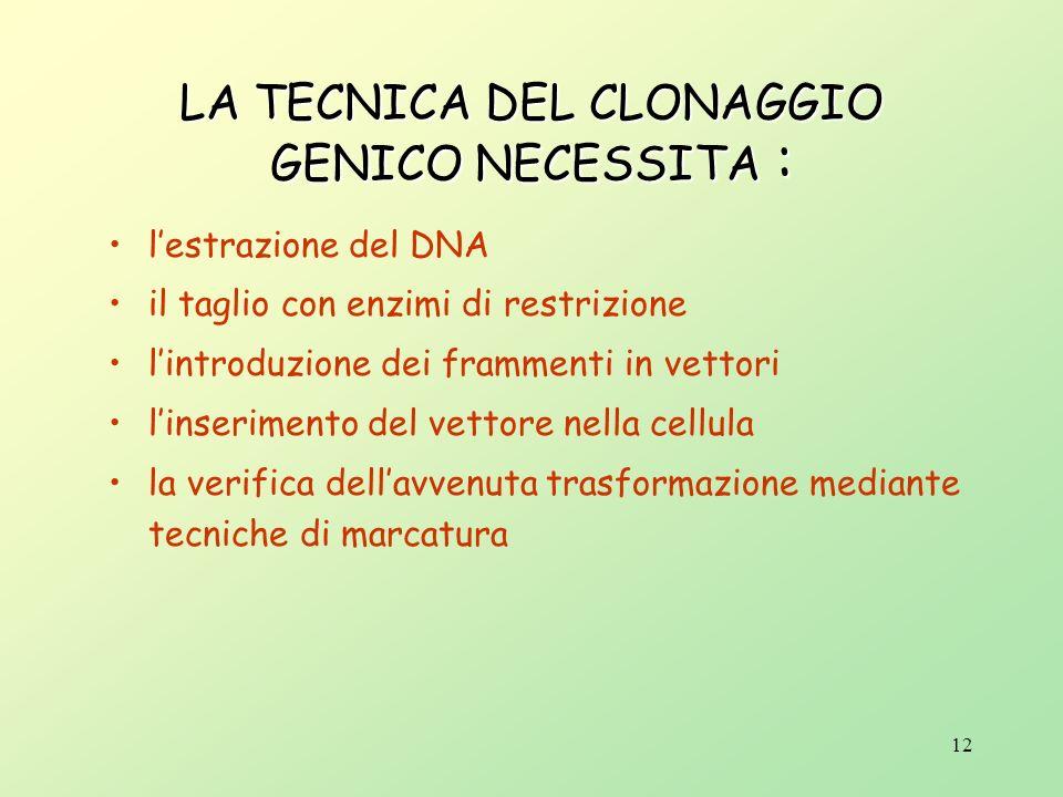 11 IL CLONAGGIO RICHIEDE Che il frammento di DNA da clonare (definito inserto) sia unito ad unaltra molecola di DNA (il vettore) un sistema ospite evo