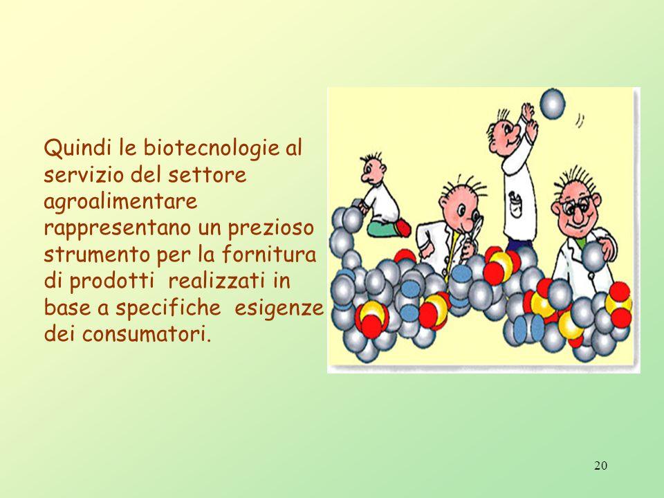 19 Piante transgeniche Metodo dell'Agrobacterium Metodo del cannone Metodo dellelettroperforazione Metodo dellembriogenesi