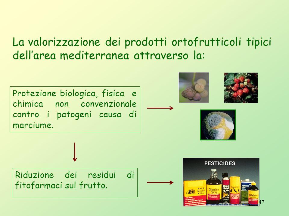 46 Agricoltura sostenibile Progetti e prodotti Protezione biologica di prodotti ortofrutticoli mediante lutilizzo integrato di microrganismi antagonis