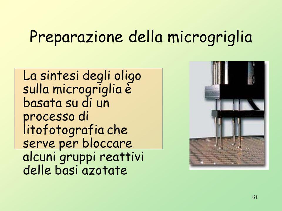 60 Esistono due varianti del DNA microarray DNA chip Sistema meccanico di posizionamento di oligonucleotidi (da 20 a 25 pb) assemblati su di una micro