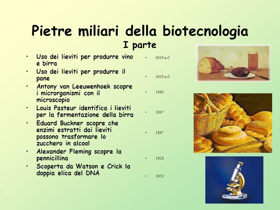 Biotecnologia Per Biotecnologia si intende lutilizzazione progettuale dei sistemi biologici per ottenere beni e servizi