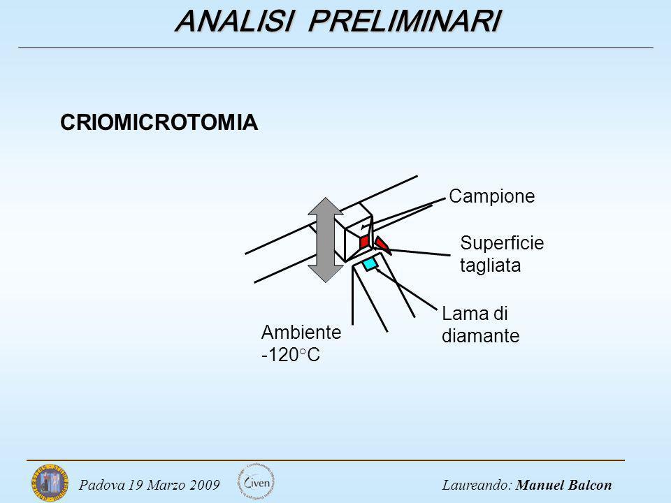 Laureando: Manuel BalconPadova 19 Marzo 2009 ANALISI PRELIMINARI CRIOMICROTOMIA Lama di diamante Campione Superficie tagliata Ambiente -120°C