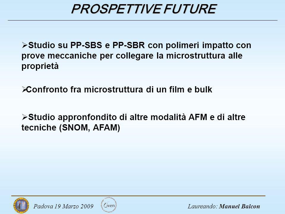 Laureando: Manuel BalconPadova 19 Marzo 2009 PROSPETTIVE FUTURE Studio su PP-SBS e PP-SBR con polimeri impatto con prove meccaniche per collegare la m