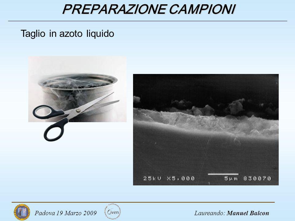 Laureando: Manuel BalconPadova 19 Marzo 2009 PREPARAZIONE CAMPIONI Taglio in azoto liquido