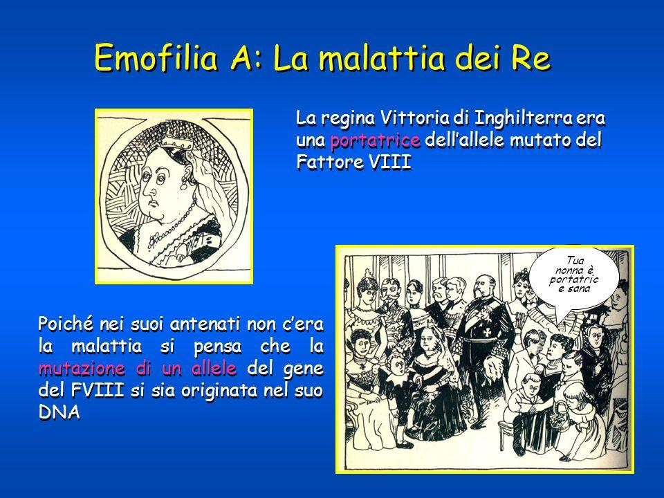 Emofilia A: La malattia dei Re La regina Vittoria di Inghilterra era una portatrice dellallele mutato del Fattore VIII Poiché nei suoi antenati non ce