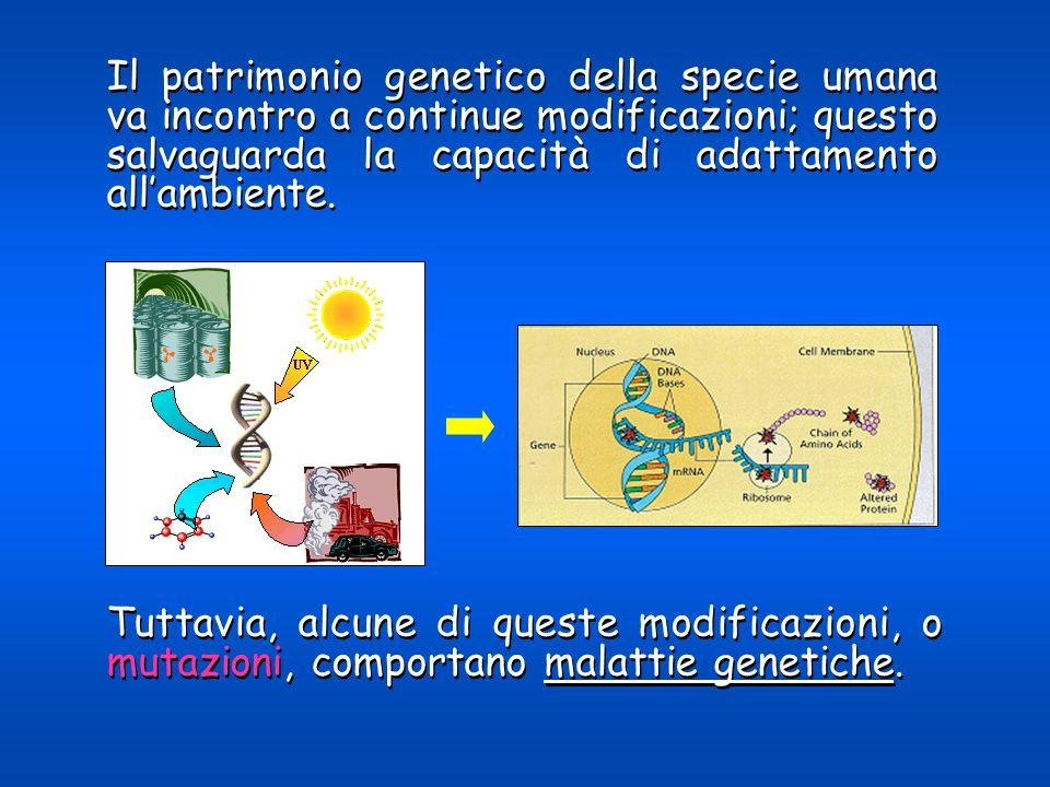 In ogni caso la gestione delle informazioni genetiche individuali dovrà essere disciplinata come quella di qualsiasi altro tipo di informazioni.