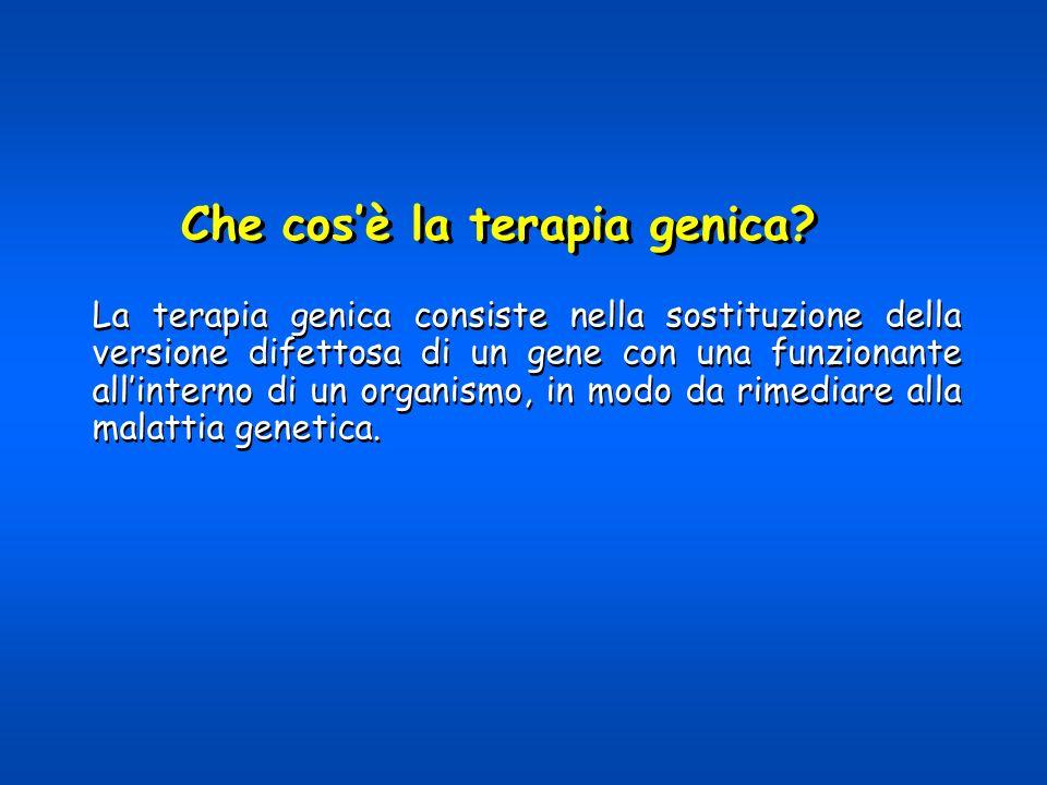 La terapia genica consiste nella sostituzione della versione difettosa di un gene con una funzionante allinterno di un organismo, in modo da rimediare