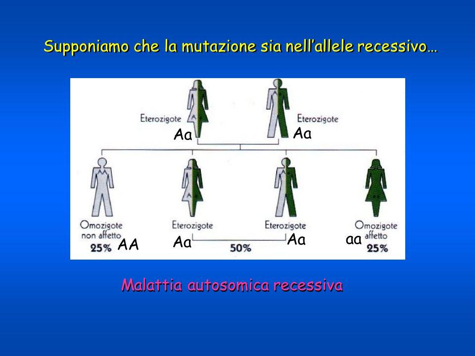 Supponiamo che la mutazione sia nellallele recessivo… Malattia autosomica recessiva aA aA aA aA AA aa