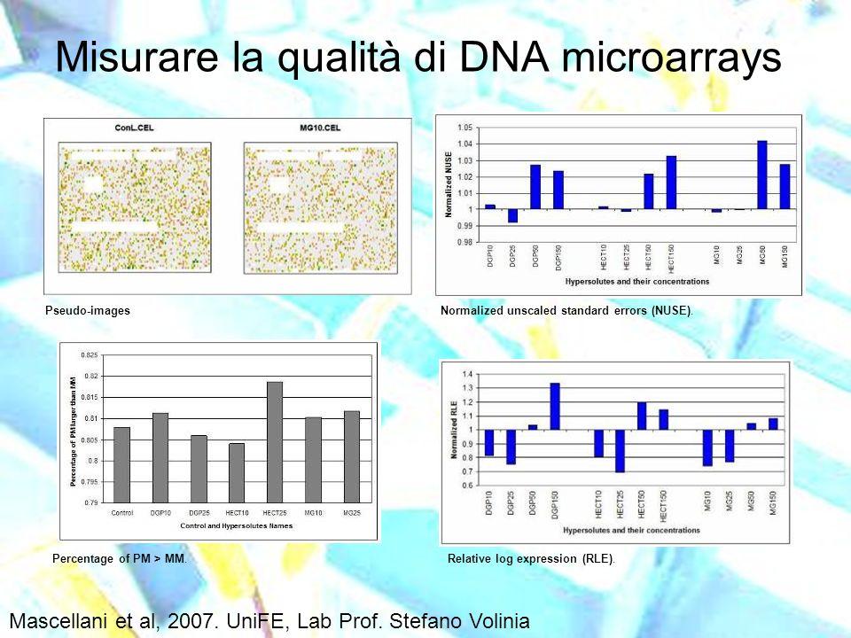 Misurare la qualità di DNA microarrays Pseudo-imagesNormalized unscaled standard errors (NUSE). Relative log expression (RLE).Percentage of PM > MM. M