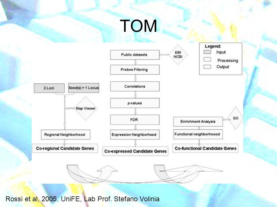 TOM Rossi et al, 2005. UniFE, Lab Prof. Stefano Volinia