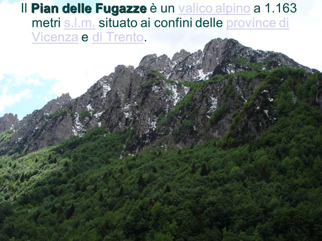 Pian delle Fugazze Il Pian delle Fugazze è un valico alpino a 1.163 metri s.l.m. situato ai confini delle province di Vicenza e di Trento.valico alpin