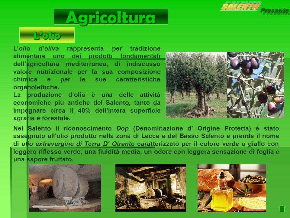 Presente Agricoltura Lolio doliva rappresenta per tradizione alimentare uno dei prodotti fondamentali dellagricoltura mediterranea, di indiscusso valo