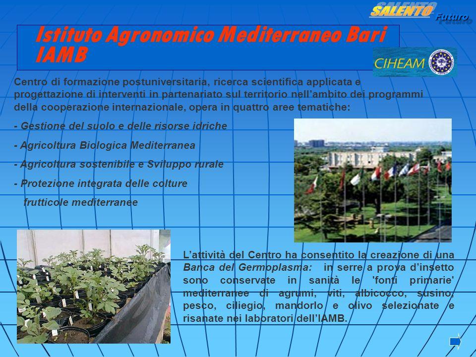 Futuro Istituto Agronomico Mediterraneo Bari IAMB Centro di formazione postuniversitaria, ricerca scientifica applicata e progettazione di interventi