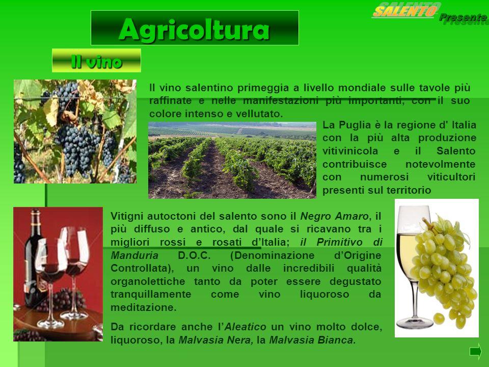 Presente Agricoltura Il vino salentino primeggia a livello mondiale sulle tavole più raffinate e nelle manifestazioni più importanti, con il suo color