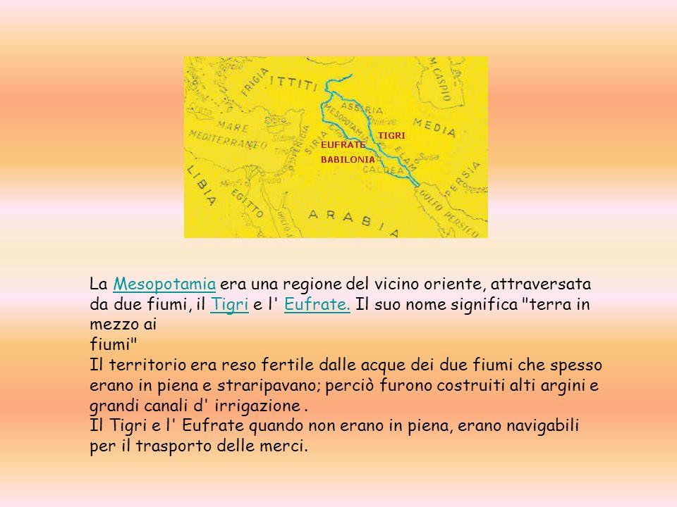 La Mesopotamia era una regione del vicino oriente, attraversata da due fiumi, il Tigri e l' Eufrate. Il suo nome significa