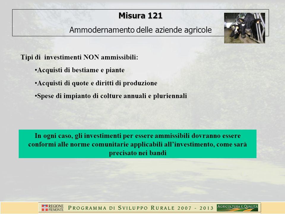 Misura 121 Ammodernamento delle aziende agricole Tipi di investimenti NON ammissibili: Acquisti di bestiame e piante Acquisti di quote e diritti di produzione Spese di impianto di colture annuali e pluriennali In ogni caso, gli investimenti per essere ammissibili dovranno essere conformi alle norme comunitarie applicabili allinvestimento, come sarà precisato nei bandi