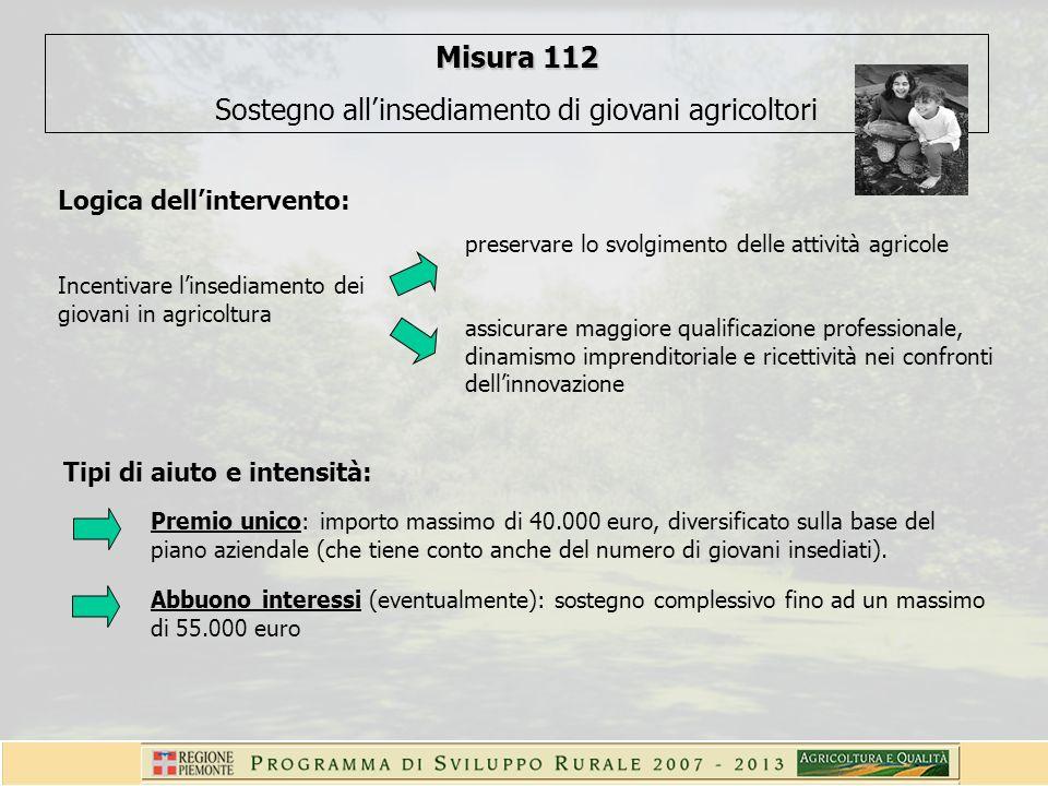 Misura 112 Sostegno allinsediamento di giovani agricoltori Logica dellintervento: Incentivare linsediamento dei giovani in agricoltura preservare lo s