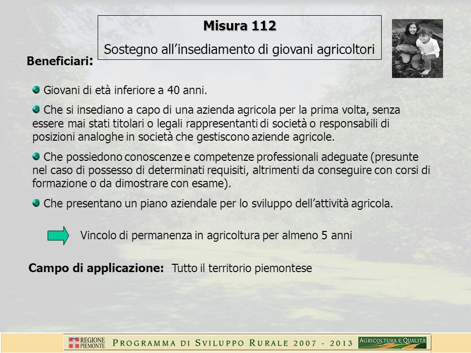 Elementi essenziali caratterizzanti lapplicazione in Piemonte La Misura viene attuata a bando.