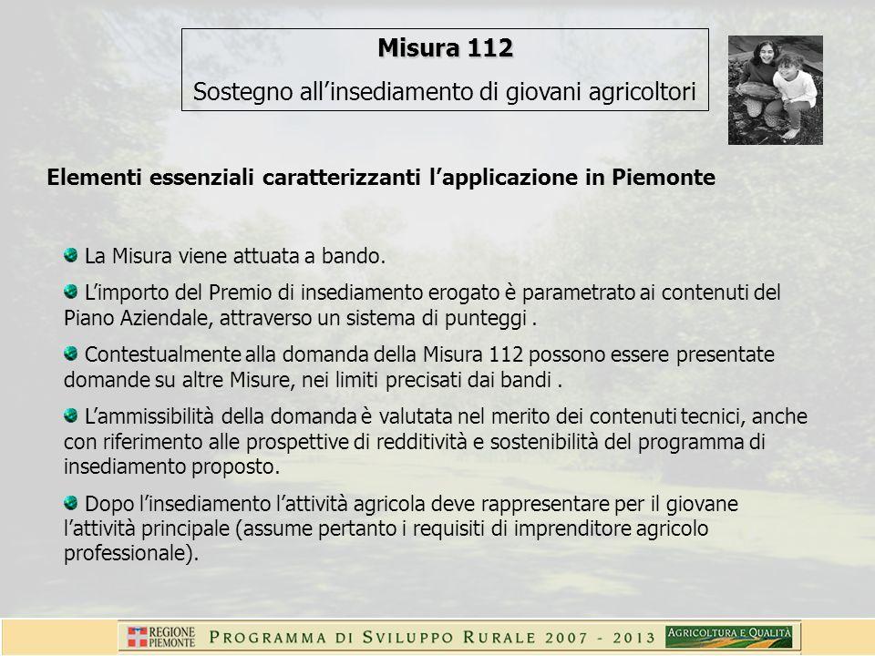 Elementi essenziali caratterizzanti lapplicazione in Piemonte La Misura viene attuata a bando. Limporto del Premio di insediamento erogato è parametra
