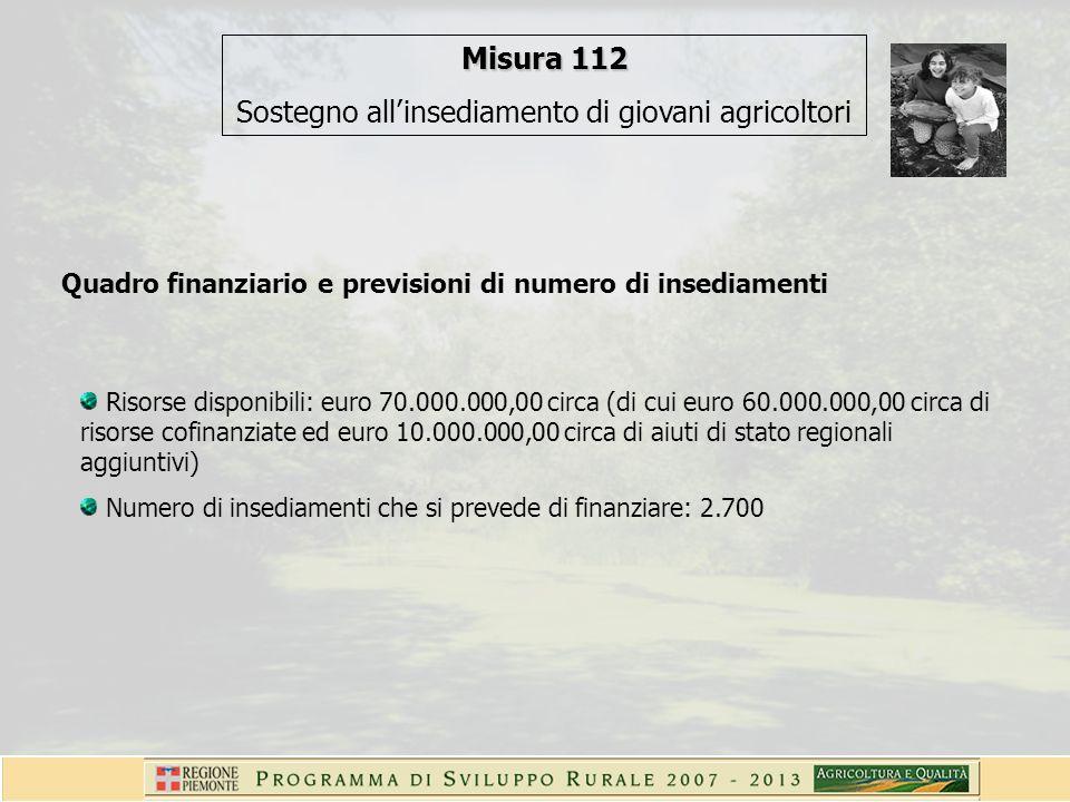 Quadro finanziario e previsioni di numero di insediamenti Risorse disponibili: euro 70.000.000,00 circa (di cui euro 60.000.000,00 circa di risorse cofinanziate ed euro 10.000.000,00 circa di aiuti di stato regionali aggiuntivi) Numero di insediamenti che si prevede di finanziare: 2.700 Misura 112 Sostegno allinsediamento di giovani agricoltori