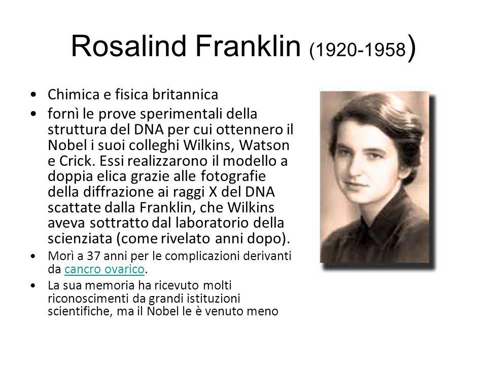 Rosalind Franklin (1920-1958 ) Chimica e fisica britannica fornì le prove sperimentali della struttura del DNA per cui ottennero il Nobel i suoi colleghi Wilkins, Watson e Crick.