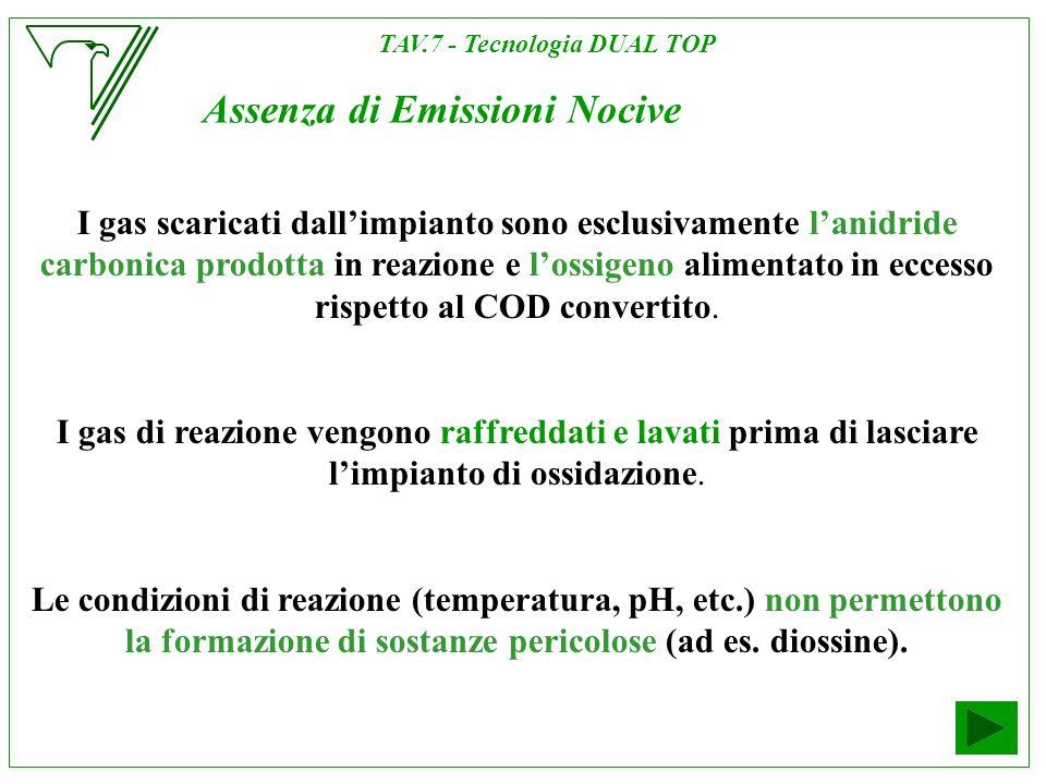 Assenza di Emissioni Nocive I gas scaricati dallimpianto sono esclusivamente lanidride carbonica prodotta in reazione e lossigeno alimentato in eccess