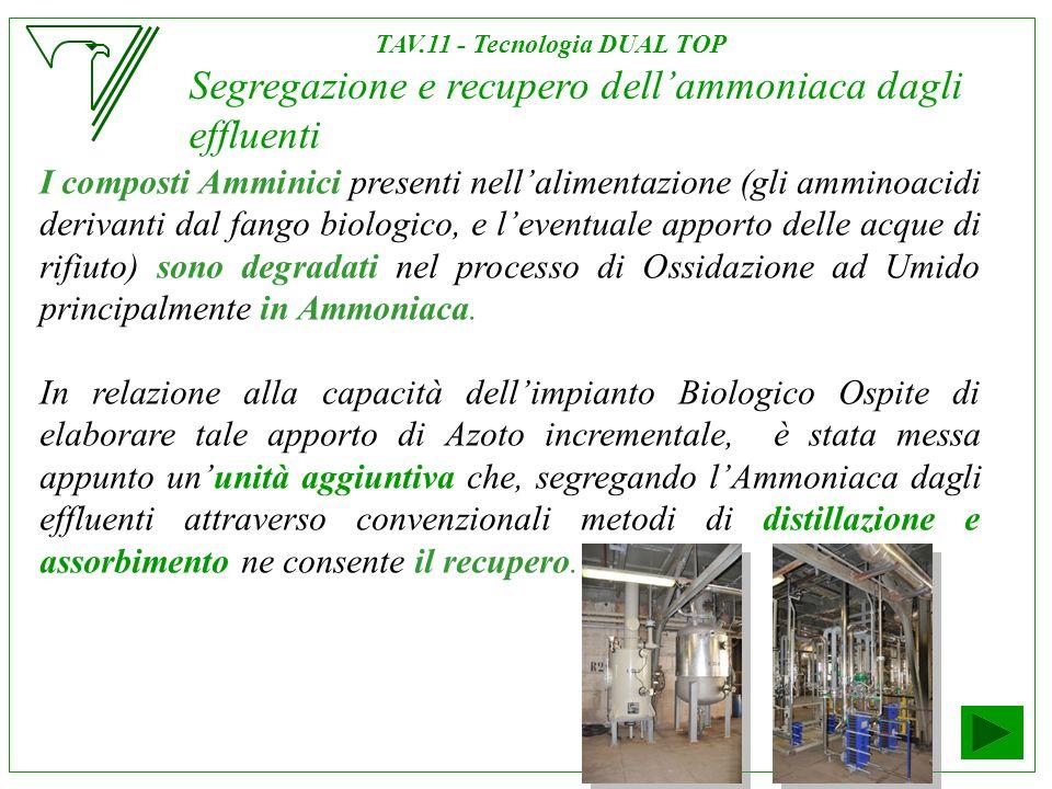 Segregazione e recupero dellammoniaca dagli effluenti I composti Amminici presenti nellalimentazione (gli amminoacidi derivanti dal fango biologico, e