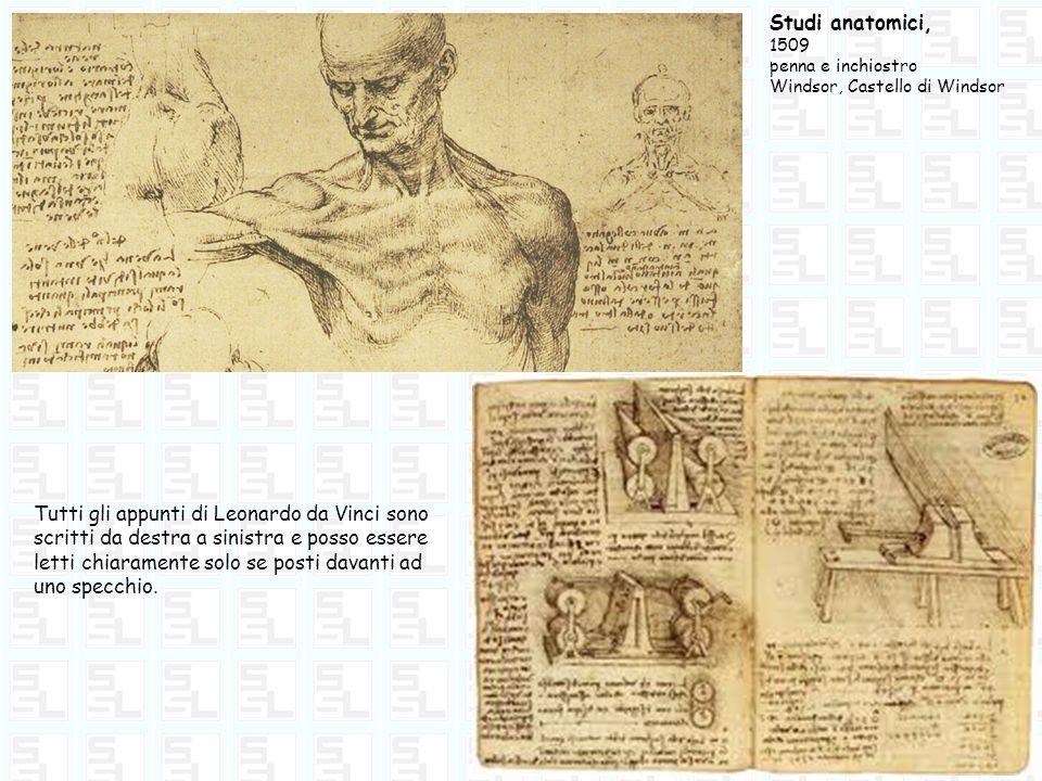 Studi anatomici, 1509 penna e inchiostro Windsor, Castello di Windsor Tutti gli appunti di Leonardo da Vinci sono scritti da destra a sinistra e posso