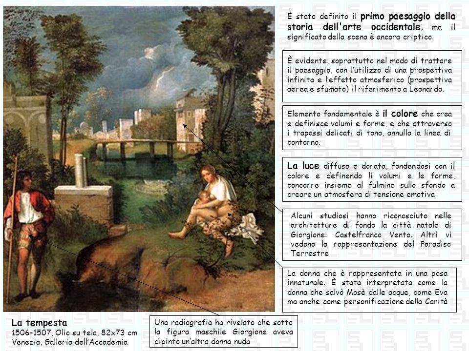 La tempesta 1506-1507, Olio su tela, 82x73 cm Venezia, Galleria dellAccademia È stato definito il primo paesaggio della storia dell'arte occidentale,