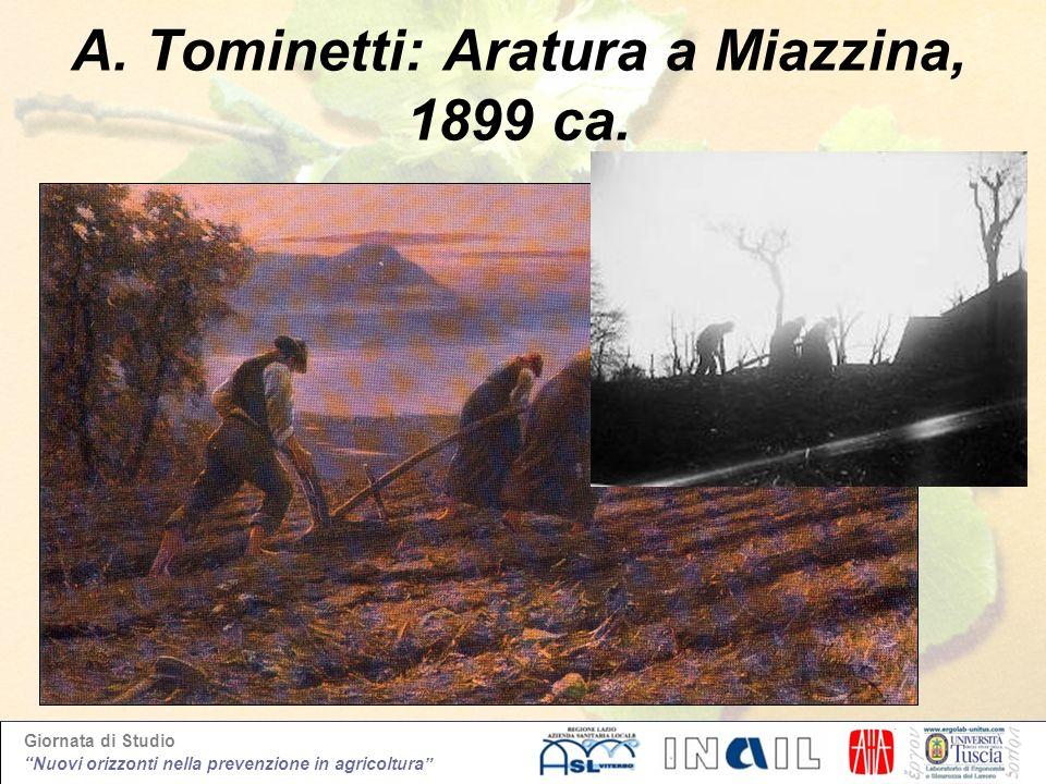 Giornata di Studio Nuovi orizzonti nella prevenzione in agricoltura A. Tominetti: Aratura a Miazzina, 1899 ca.