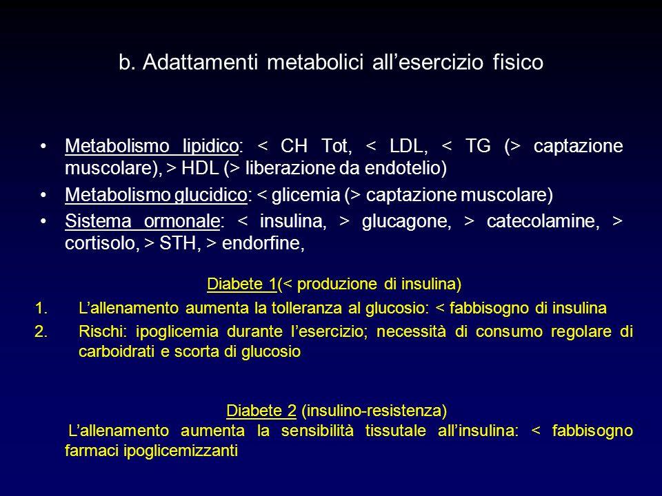 b. Adattamenti metabolici allesercizio fisico Metabolismo lipidico: captazione muscolare), > HDL (> liberazione da endotelio) Metabolismo glucidico: c