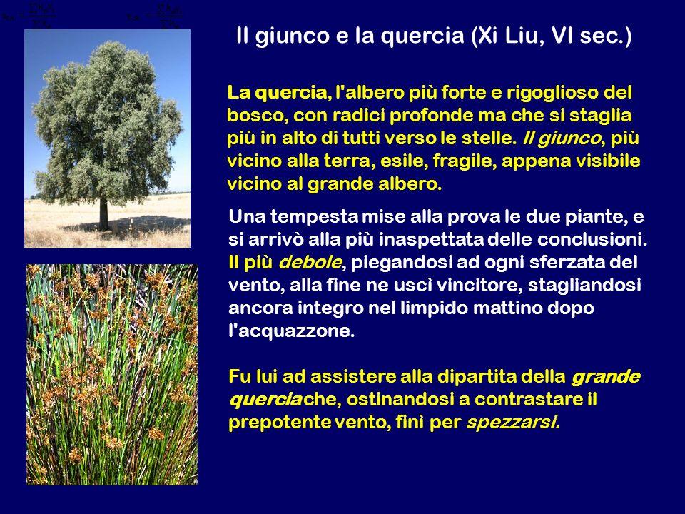 Il giunco e la quercia (Xi Liu, VI sec.) Una tempesta mise alla prova le due piante, e si arrivò alla più inaspettata delle conclusioni. Il più debole