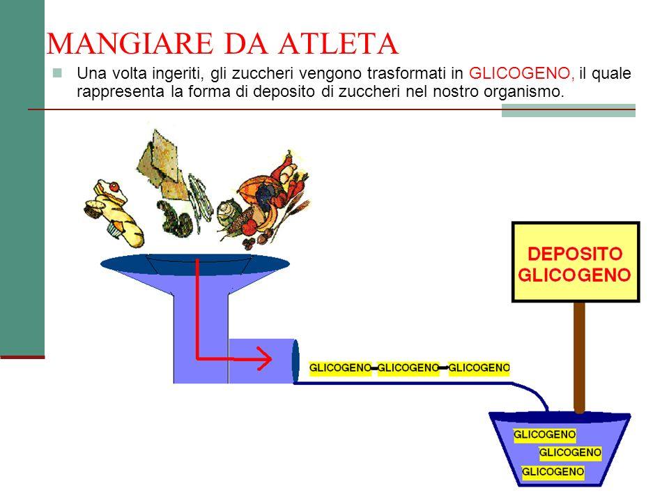MANGIARE DA ATLETA Una volta ingeriti, gli zuccheri vengono trasformati in GLICOGENO, il quale rappresenta la forma di deposito di zuccheri nel nostro