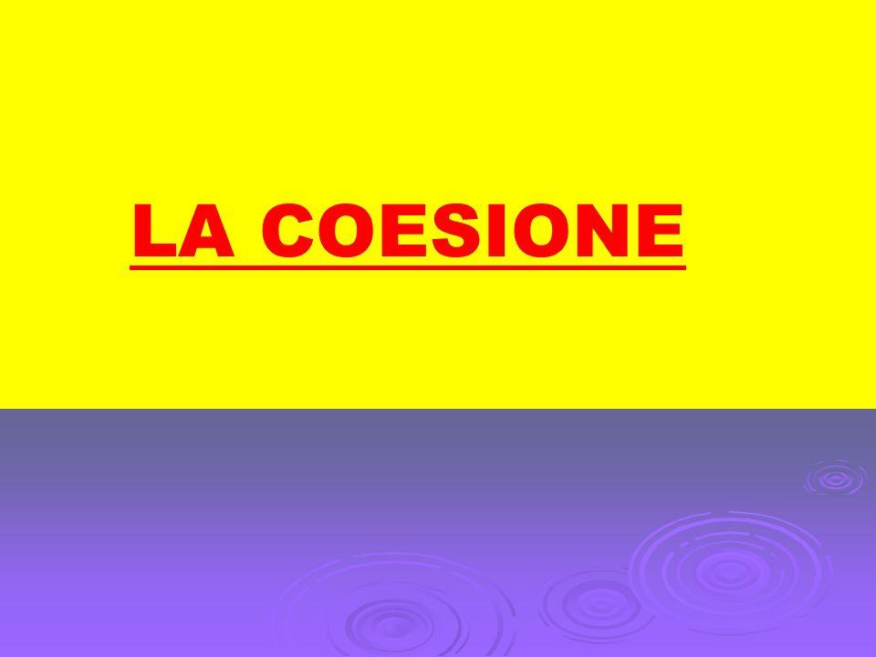 LA COESIONE