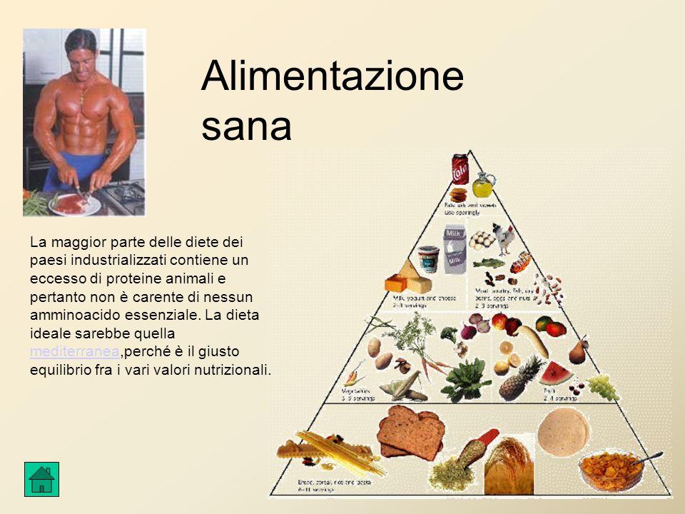 Alimentazione sana La maggior parte delle diete dei paesi industrializzati contiene un eccesso di proteine animali e pertanto non è carente di nessun amminoacido essenziale.