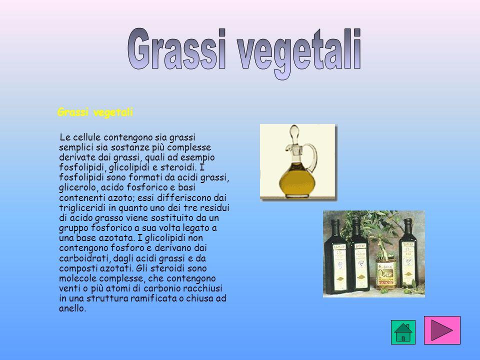 Grassi vegetali Le cellule contengono sia grassi semplici sia sostanze più complesse derivate dai grassi, quali ad esempio fosfolipidi, glicolipidi e steroidi.