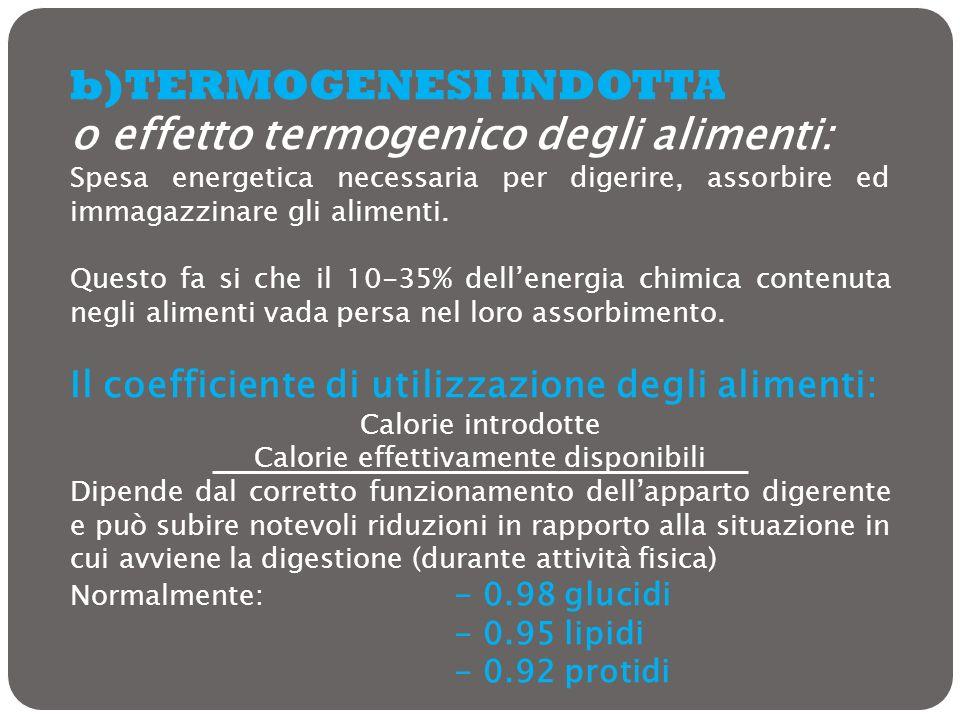 b)TERMOGENESI INDOTTA o effetto termogenico degli alimenti: Spesa energetica necessaria per digerire, assorbire ed immagazzinare gli alimenti. Questo
