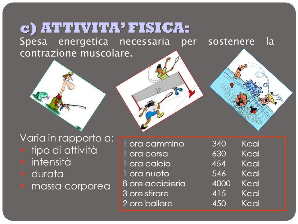c) ATTIVITA FISICA: Spesa energetica necessaria per sostenere la contrazione muscolare. Varia in rapporto a: tipo di attività intensità durata massa c