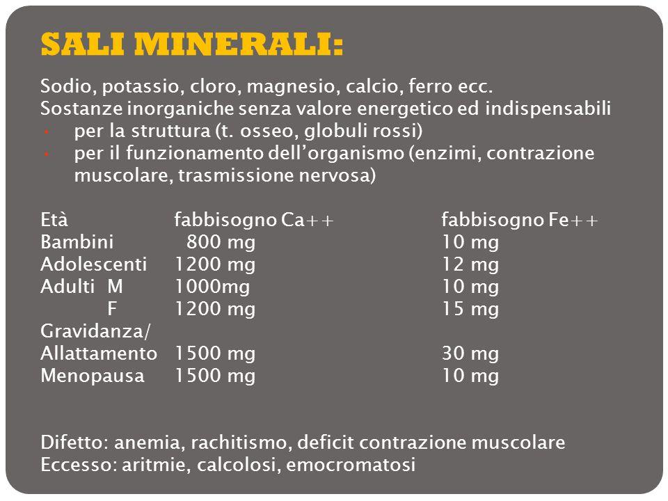SALI MINERALI: Sodio, potassio, cloro, magnesio, calcio, ferro ecc. Sostanze inorganiche senza valore energetico ed indispensabili per la struttura (t