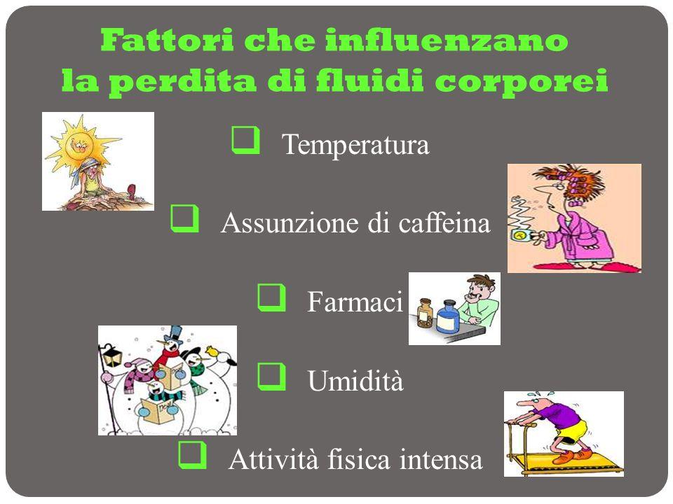 Fattori che influenzano la perdita di fluidi corporei Temperatura Assunzione di caffeina Farmaci Umidità Attività fisica intensa