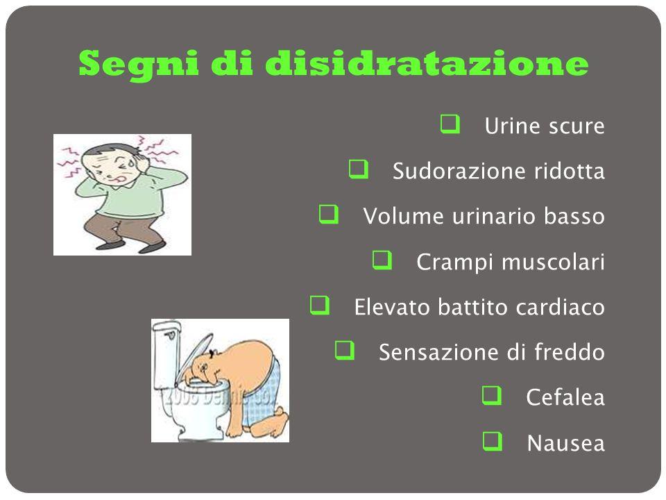 Segni di disidratazione Urine scure Sudorazione ridotta Volume urinario basso Crampi muscolari Elevato battito cardiaco Sensazione di freddo Cefalea N