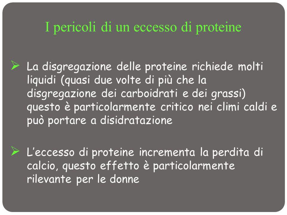 I pericoli di un eccesso di proteine La disgregazione delle proteine richiede molti liquidi (quasi due volte di più che la disgregazione dei carboidra