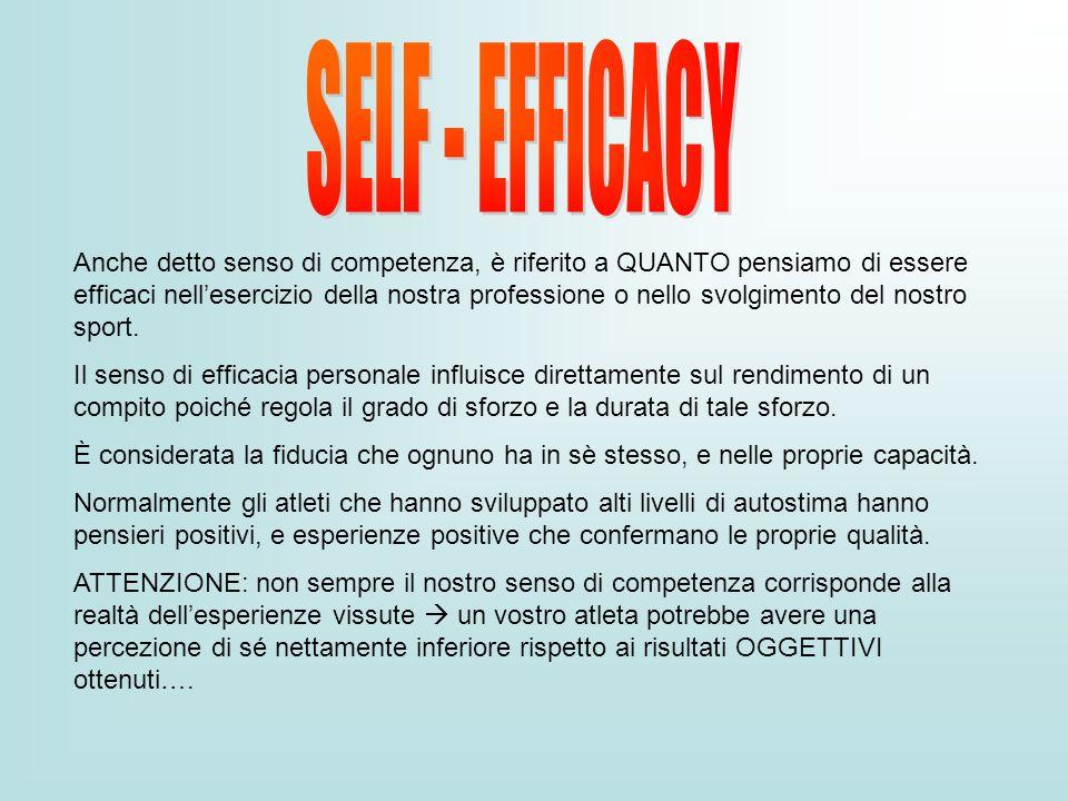 Anche detto senso di competenza, è riferito a QUANTO pensiamo di essere efficaci nellesercizio della nostra professione o nello svolgimento del nostro
