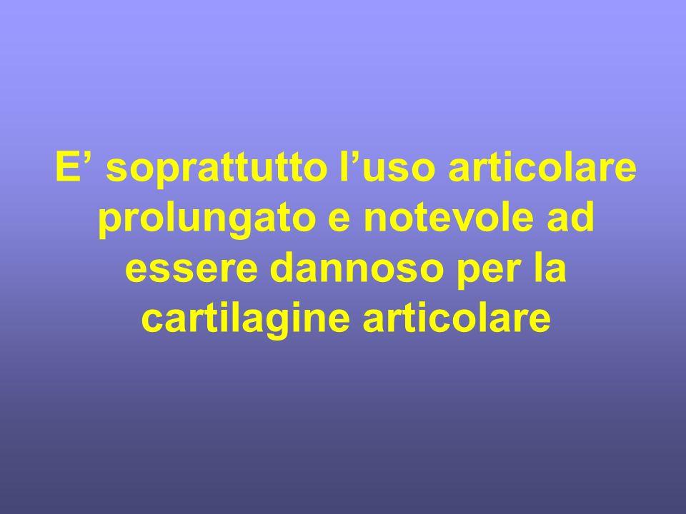E soprattutto luso articolare prolungato e notevole ad essere dannoso per la cartilagine articolare