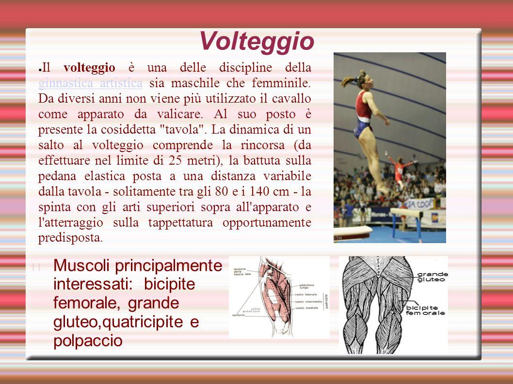 Parallele asimmetriche L esercizio alle parallele asimmetriche richiede soprattutto forza nelle braccia.