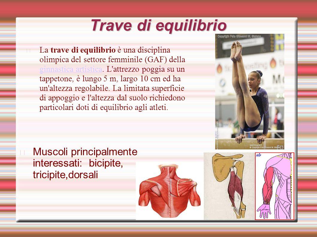 Trave di equilibrio La trave di equilibrio è una disciplina olimpica del settore femminile (GAF) della ginnastica artistica.
