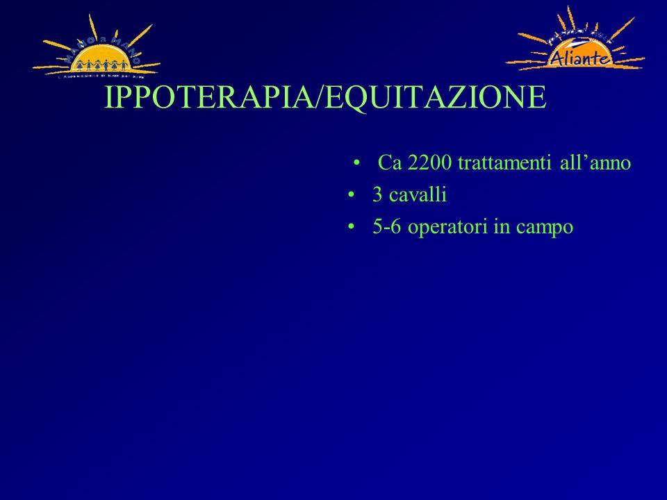 IPPOTERAPIA/EQUITAZIONE Ca 2200 trattamenti allanno 3 cavalli 5-6 operatori in campo