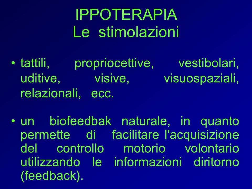 IPPOTERAPIA Le stimolazioni tattili, propriocettive, vestibolari, uditive, visive, visuospaziali, relazionali, ecc.