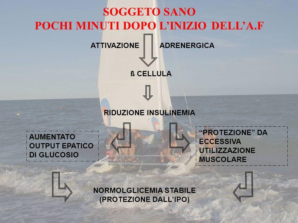 Perfusione del letto vascolare Attività di IGF-1, chinine, prostaglandine Sensibilità dei recettori per linsulina Esposizione dei recettori per linsulina Disponibilità di O2 Trasporto del glucosio dentro la cellula Aumento sensibilità allinsulina nel muscolo durante lesercizio fisico