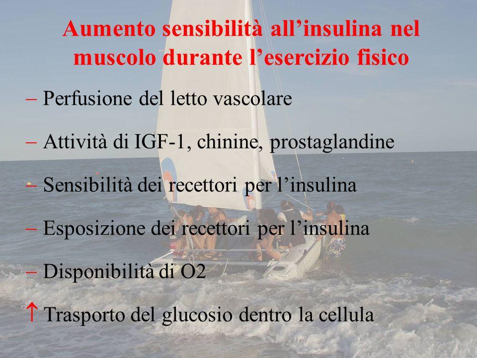 Perfusione del letto vascolare Attività di IGF-1, chinine, prostaglandine Sensibilità dei recettori per linsulina Esposizione dei recettori per linsul